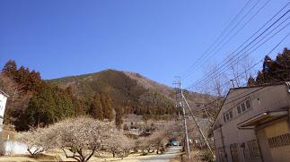 百蔵山見上げる
