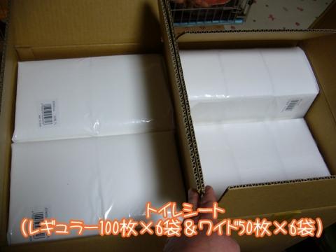 P1150910.jpg
