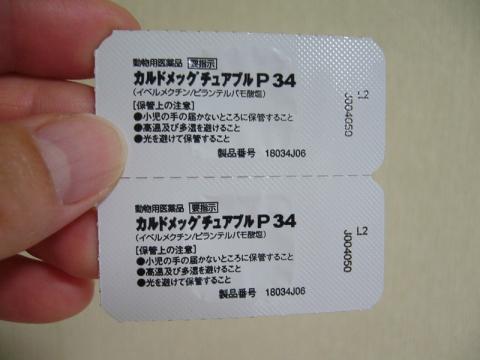 P1160067.jpg