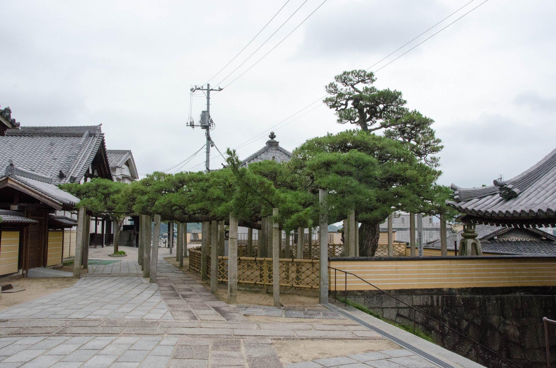 0629onomichi_04