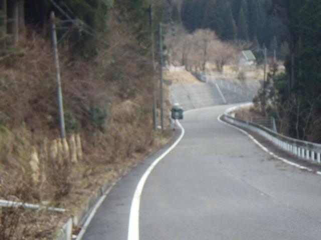 IMGP4330.jpg