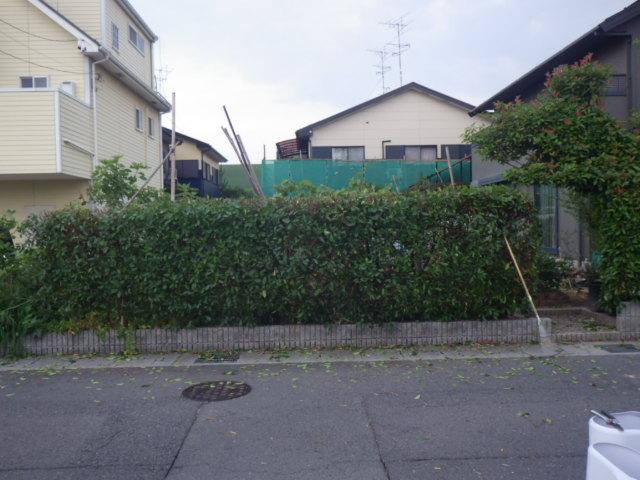 IMGP5087.jpg
