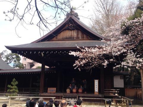 靖国神社2014さくらまつり3