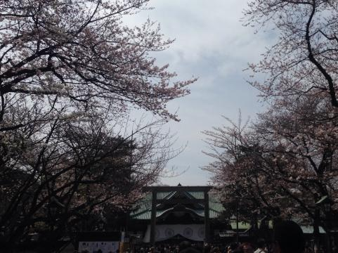 靖国神社2014さくらまつり4