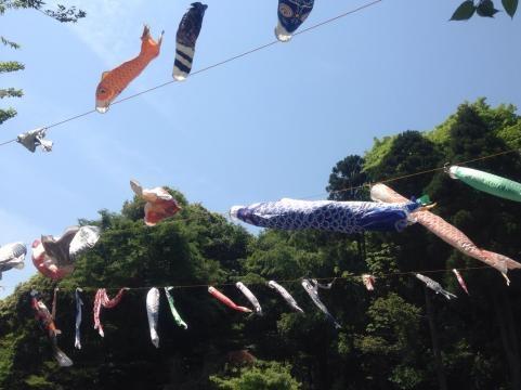 鷹取山登山20140504f