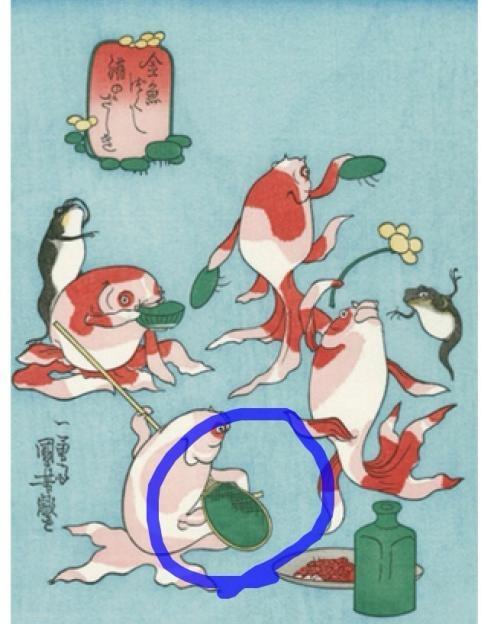 弁天金魚原画4