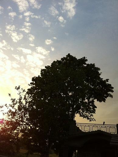 北インドの夜明け