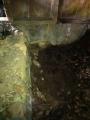 掘りっぱなしのお風呂 4