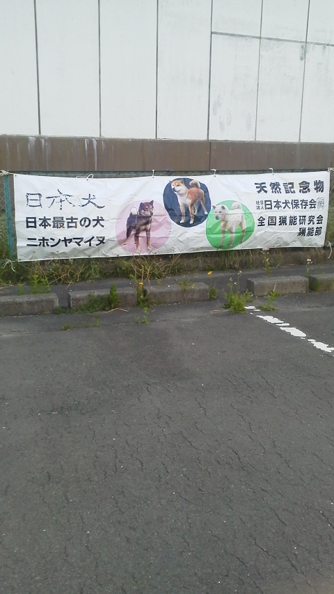 NEC_5516.jpg