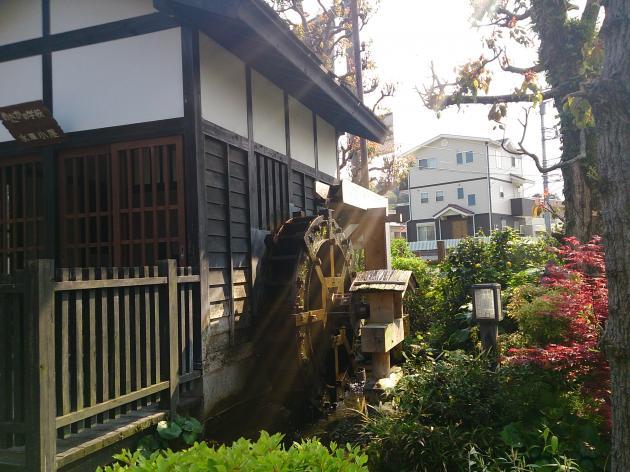 20140424_odawara_03.jpg