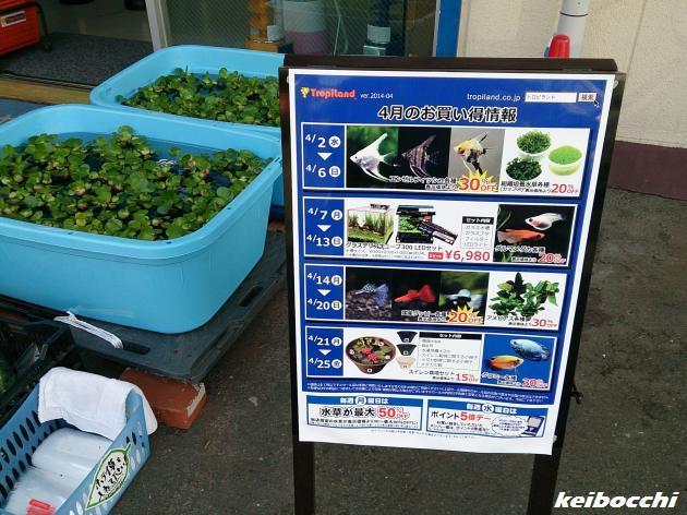 kirifuki_20140412_2.jpg