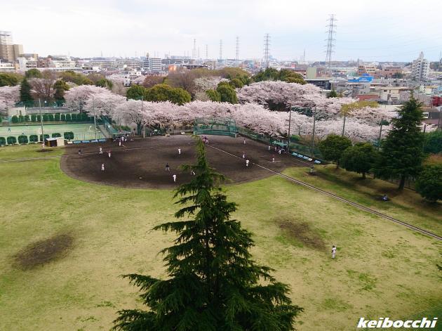 youkihi_20140405_0.jpg
