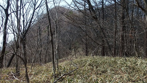 20140426_sumomogatake-006