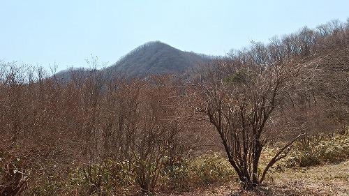 20140426_sumomogatake-028