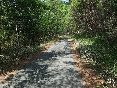 20140524_nabewariyama-005