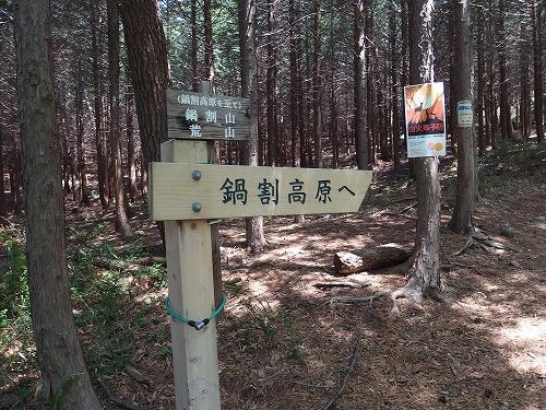 20140524_nabewariyama-006