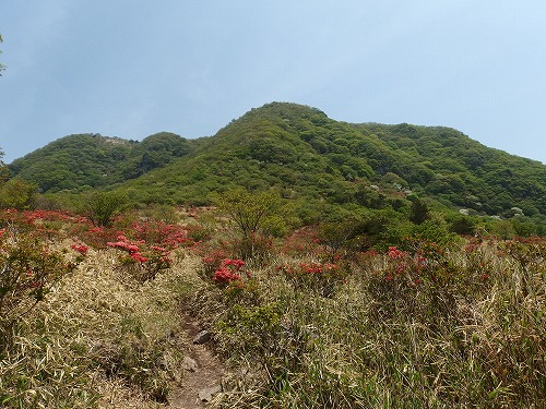 20140524_nabewariyama-014