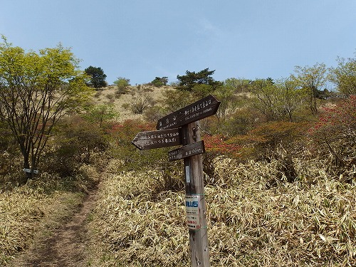 20140524_nabewariyama-020