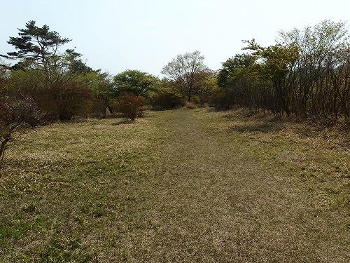 20140524_nabewariyama-032
