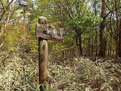 20140524_nabewariyama-035