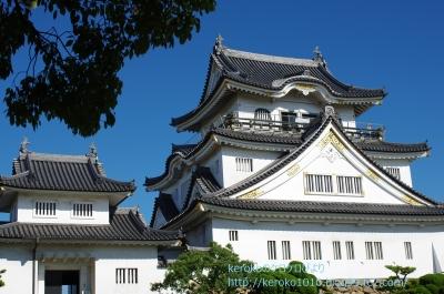 2014-07-25岸和田城