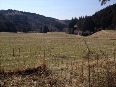 吉野山初ホビオ 022