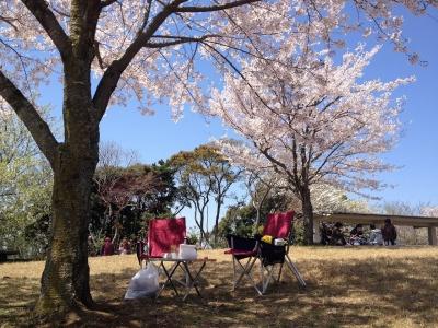 鏡山DEお花見 009