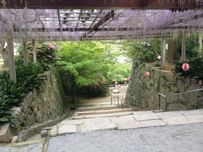 唐津城から多久聖廟 027