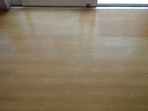 床磨き (3)