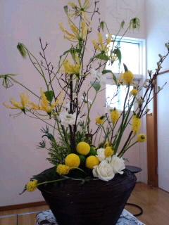 イ-スタ-のお花