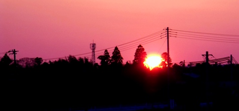 画像ー200 099-2