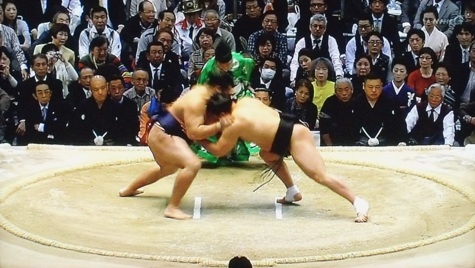 画像ー207可也屋賞&相撲など 171-2
