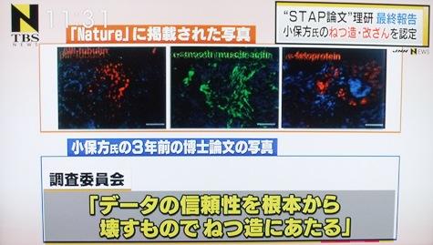 画像ー212理研 022-2