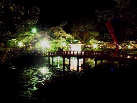 画像ー214夜桜 028-2