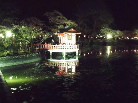 画像ー214夜桜 029-2