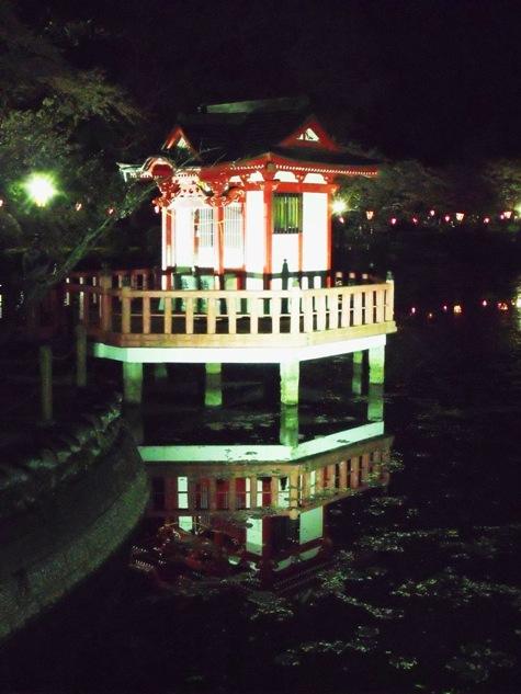 画像ー214夜桜 032-2