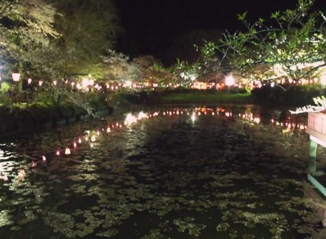 画像ー214夜桜 035-2
