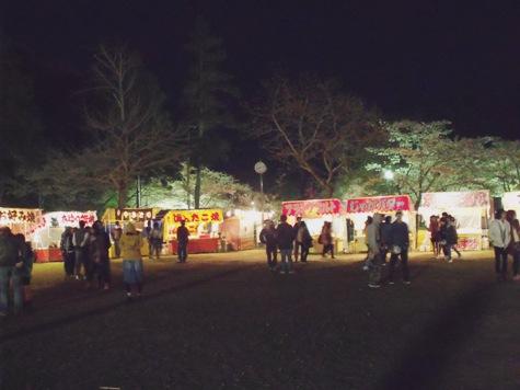 画像ー214夜桜 050-2