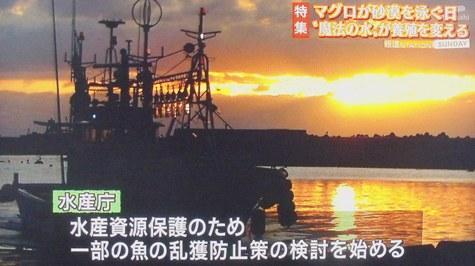 画像ー217好調環境 052-2