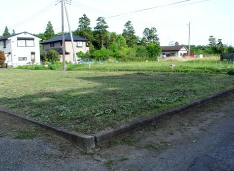 画像ー222初夏の庭の風景 061-2