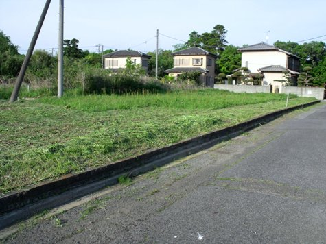画像ー222初夏の庭の風景 058-2