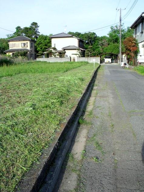 画像ー222初夏の庭の風景 059-2