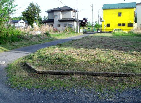 画像ー222初夏の庭の風景 063-2