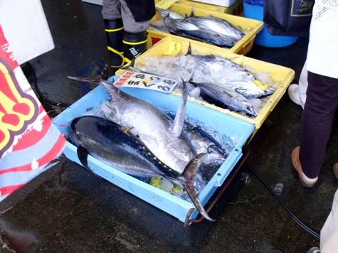 画像ー228大原漁港・朝市 029-2