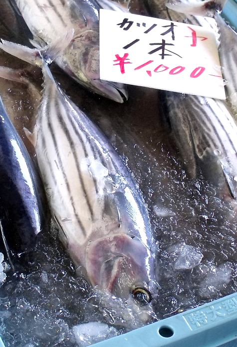 画像ー228大原漁港・朝市 038-4