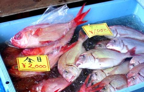 画像ー228大原漁港・朝市 040-3