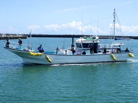 画像ー228大原漁港・朝市 124-2