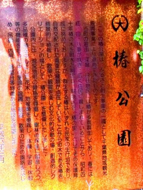 画像ー228大原漁港・朝市 142-2