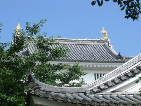 画像ー243大多喜城と薬医門 024-2