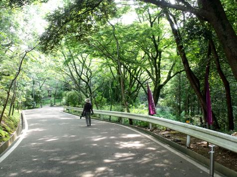 画像ー243大多喜城と薬医門 093-2